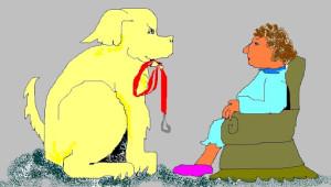 Edgar the Teacup Poodle